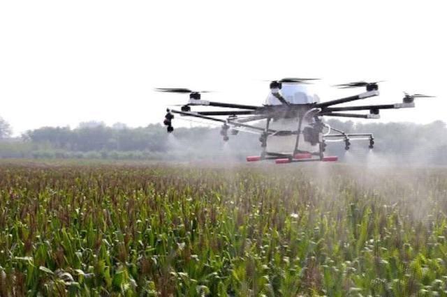 Pulverização com uso de drones na pecuária