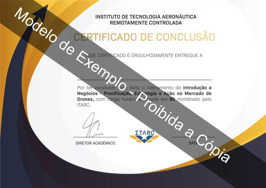 Certificado Introdução a Negócios